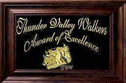 Thunder Valley Walkers Award Of Excellence