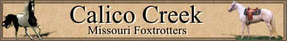 Calico Creek Foxtrotters