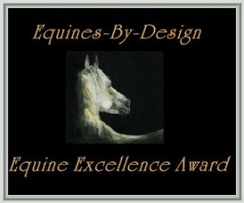 Equines-By-Designs ~ Equine Excellence Award