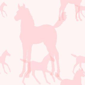 #6C - Pink Foal Background