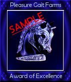 Sample of Our Blue Knight Award of Excellence