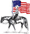 paint horse with USA flag