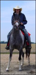 dark gray & white foxtrotter mare